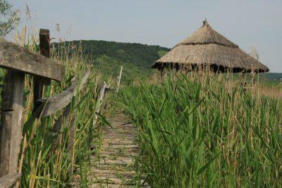 Paseo por el delta de Ardeal
