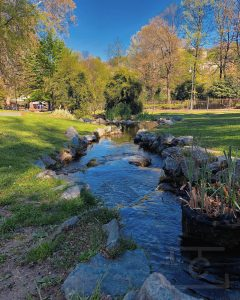 Arroyo Parco Valentino de @occhiodicri