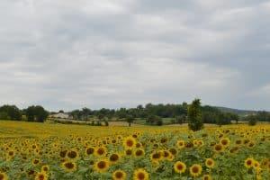 viajar a la Toscana