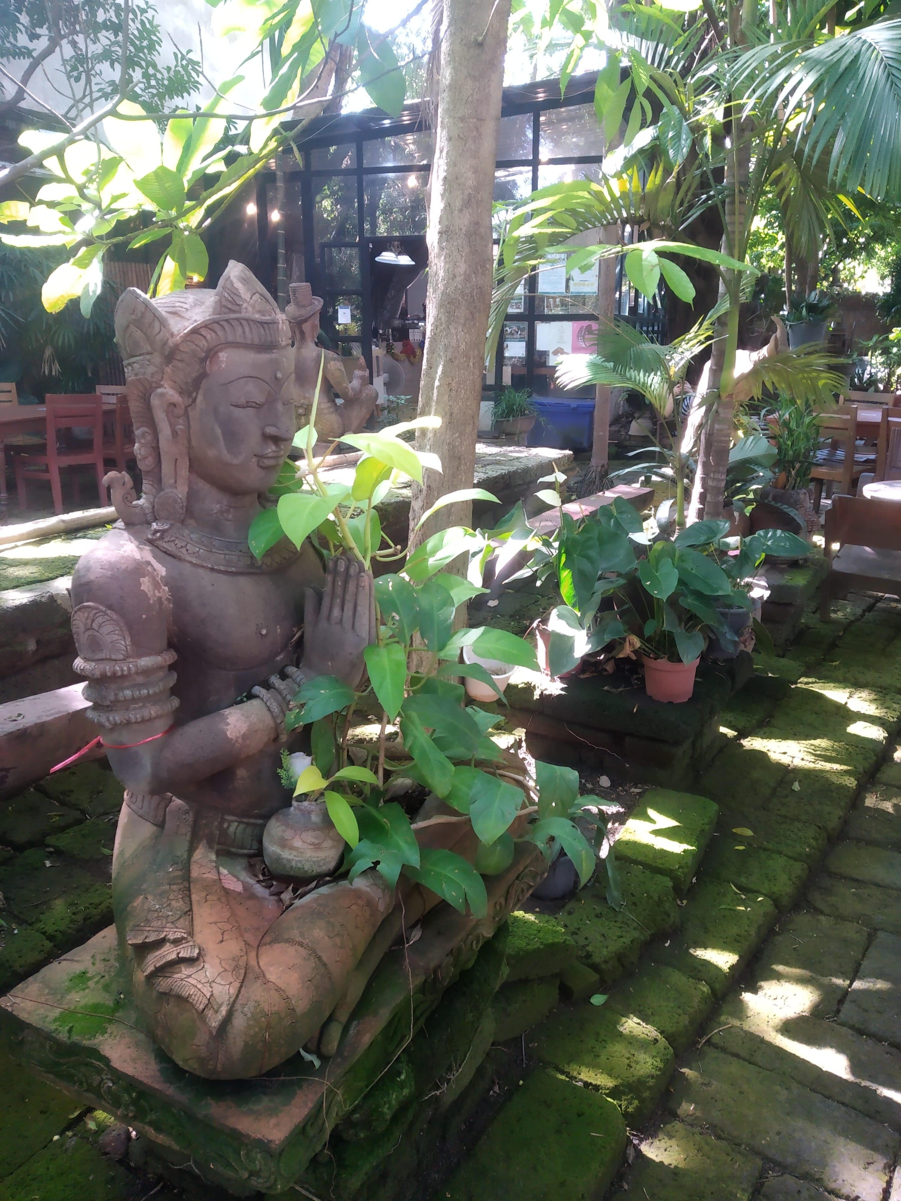 jardín de Terracota